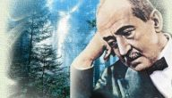تعرف على حياة ومؤلفات الشاعر أحمد شوقي