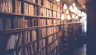 ما هي أجمل القصائد وأبيات الشعر العربي في التاريخ الأدبي