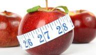 فوائد التفاح للريجيم.. من بينها حرق الدهون المتراكمة في الجسم