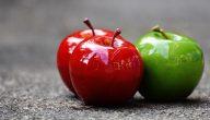 نظرة على أهم فوائد خل التفاح العضوي وكيفية استخدامه