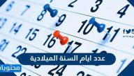 عدد أيام السنة الميلادية .. كم عدد أيام السنة الميلادية بالتفصيل