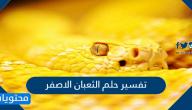 تفسير حلم الثعبان الاصفر