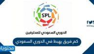 كم فريق يهبط في الدوري السعودي