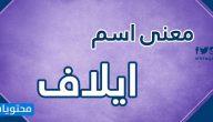 معنى اسم ايلاف Elaf وصفات حاملة الاسم