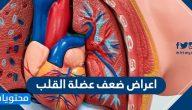 اعراض ضعف عضلة القلب .. والعلامات التحذيرية وأسباب الإصابة بها