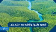البحيرة والانهار والغابة تعد امثلة على … الأنظمة البيئية