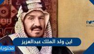 اين ولد الملك عبدالعزيز .. مدة حكم الملك عبدالعزيز وتاريخ وفاته