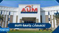 تخصصات جامعة aum .. التخصصات في جامعة الشرق الأوسط الأمريكية