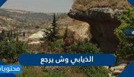 الذيابي وش يرجع .. أصول قبيلة الذيابي