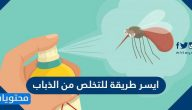 ايسر طريقة للتخلص من الذباب