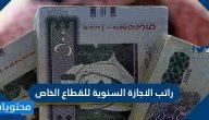 راتب الاجازة السنوية للقطاع الخاص في السعودية 1442