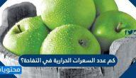 كم عدد السعرات الحرارية في التفاحة؟ .. 7 نصائح فعالة لخسارة الوزن