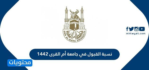 نسبة القبول في جامعة أم القرى 1442 .. جامعة أم القرى شروط القبول وكيفية التسجيل