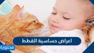 اعراض حساسية القطط .. ما هي حساسية القطط وأسبابها ومضاعفاتها