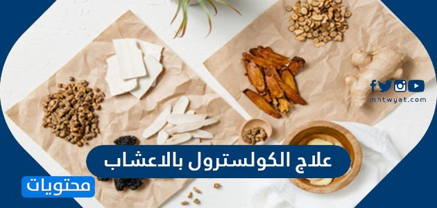 علاج الكولسترول بالاعشاب وأقوى 6 أعشاب للتحكم في الكولسترول