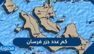 كم عدد جزر فرسان … أهم المعلومات عن جزيرة فرسان الكبرى