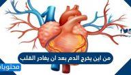 من اين يخرج الدم بعد مغادرة القلب