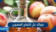 فوائد خل التفاح العضوي وطريقة استخدامه