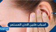 اسباب طنين الاذن المستمر وطرق علاجه والوقاية منه