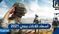 اسماء كلانات ببجي 2021 جديدة وفخمة .. اسم كلان ببجي عربي وانجليزي