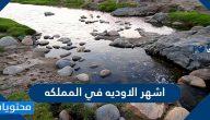 ما هي اشهر الاوديه في المملكه العربية السعودية