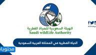 الحياة الفطرية في المملكة العربية السعودية