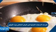 كم عدد السعرات الحرارية في البيض المقلي بزيت الزيتون