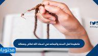ماعقيدة اهل السنه والجماعه في اسماء الله تعالى وصفاته
