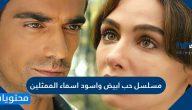 مسلسل حب ابيض واسود اسماء الممثلين
