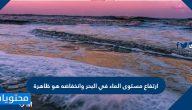 ارتفاع مستوى الماء في البحر وانخفاضه هو ظاهرة
