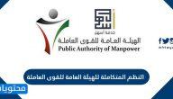 النظم المتكاملة للهيئة العامة للقوى العاملة في الكويت