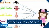 يستخدم البشر الحواس الخمس من خلال اتصاله ب