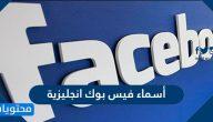 أسماء فيس بوك انجليزية 2021 جديدة للشباب والبنات