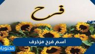 اسم فرح مزخرف ومعناه وصفات حاملة الاسم