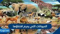 الحيوانات التي يحرم اقتناؤها