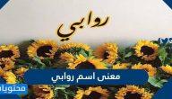 معنى اسم روابي وصفات حامل الاسم وحكم تسميته في الإسلام