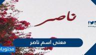 معنى اسم ناصر وصفات حامله وحكم تسميته في الإسلام
