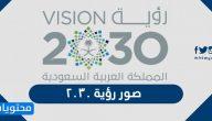 صور رؤية 2030 جديدة وصور خطوات رؤية 2030