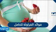 فوائد الفراولة للحامل واهم الفواكة الضروورية للحامل