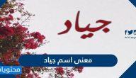 معنى اسم جياد وصفات حامل الاسم وحكم تسميته في الإسلام