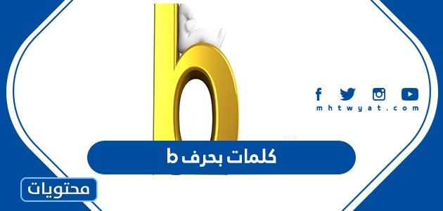 كلمات بحرف b مع معانيها